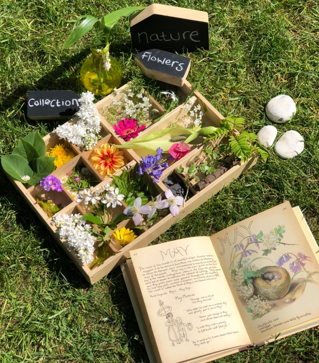 Displaying flowers and a natural collection in our tinker tray is also a lovely idea. You can sort your treasures into colours, sizes, identifying them.